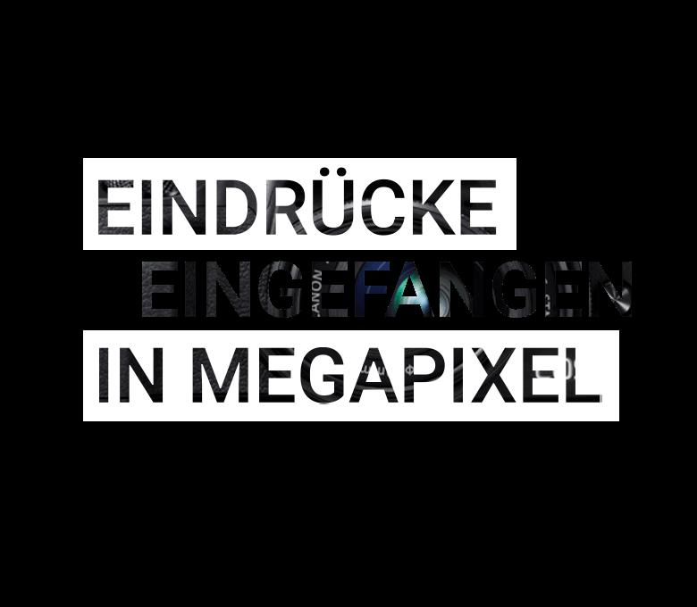 Header_Schriftzug (1)